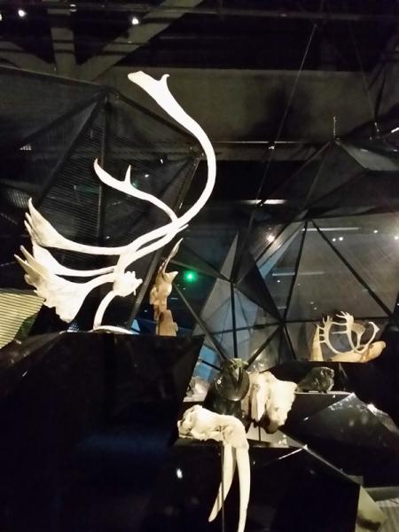 Sculptures chamaniques Inuit