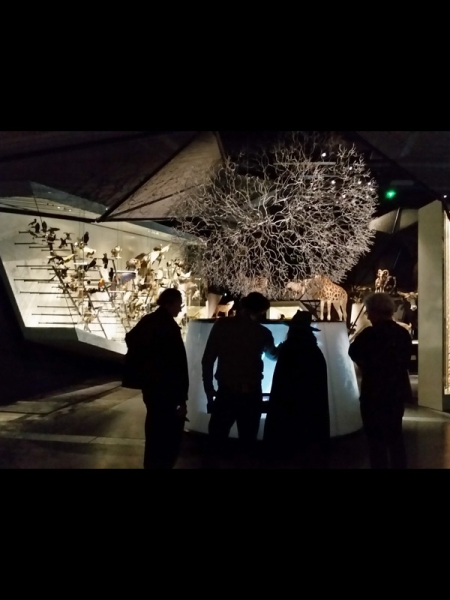 Installation interactive Buisson