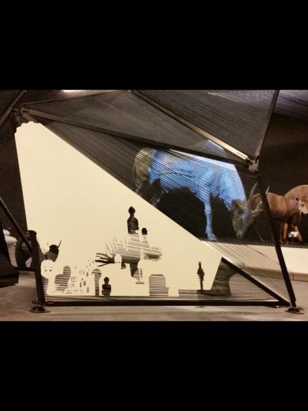 Projection sur antilope didactique